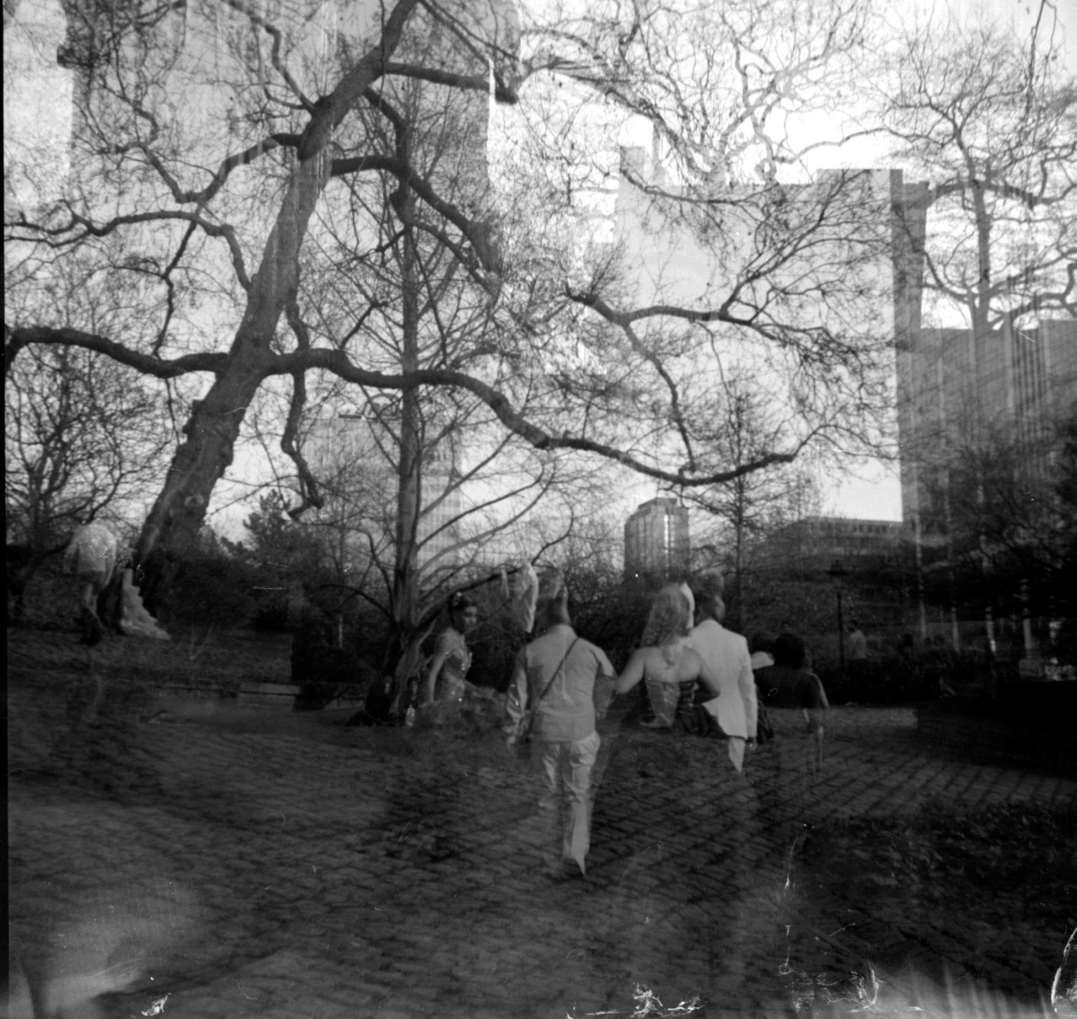 People trees dark ambiance