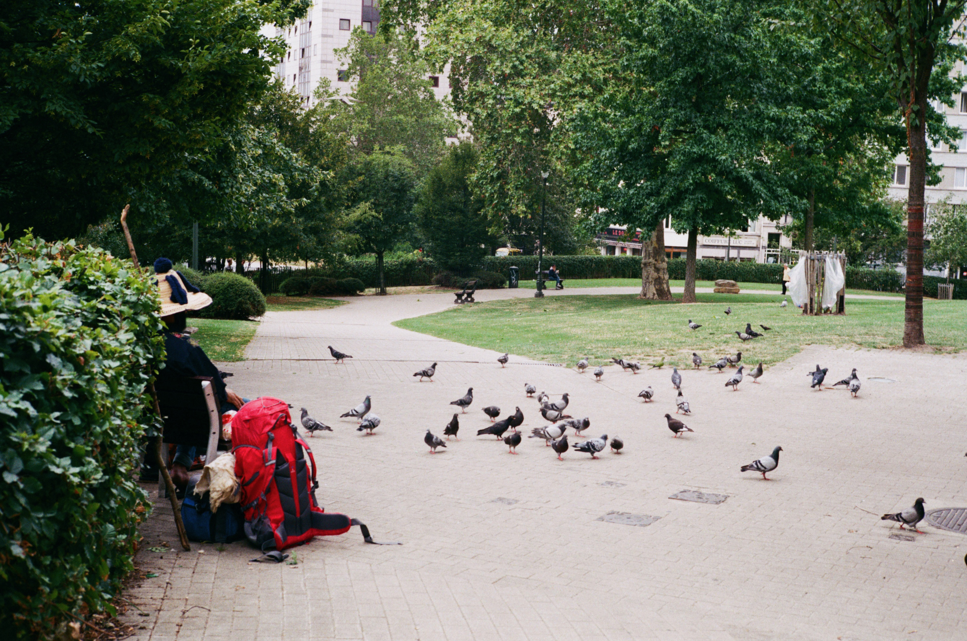 A man from another world is seated in the parc